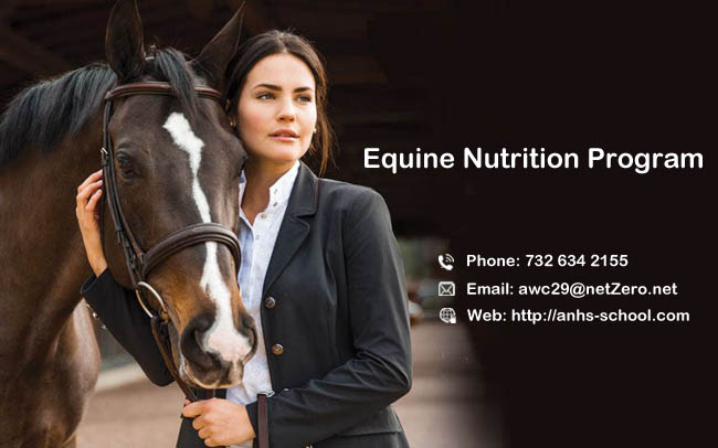 equine-nutrition-girl-and-horse