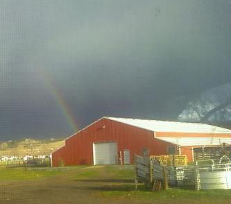 equinemotel-rainbow-11-13-08-sm