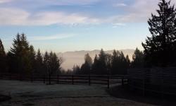 Fern Ridge Veiw.jpg
