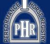 Performance-Horse