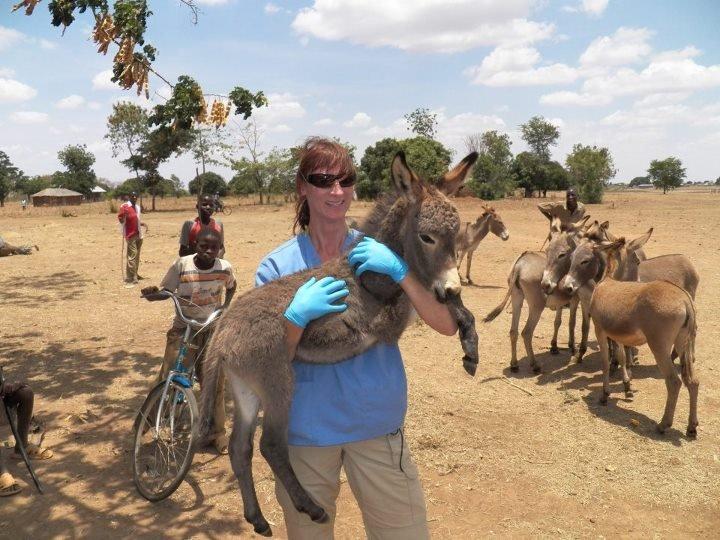 Tanzania-World Vets Trip 2012