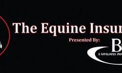 Equine Insurance.jpg