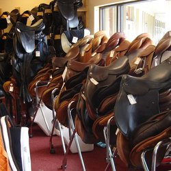 Extensive saddle selections to choose from.