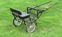 Regular Ez-Entry Cart.jpg