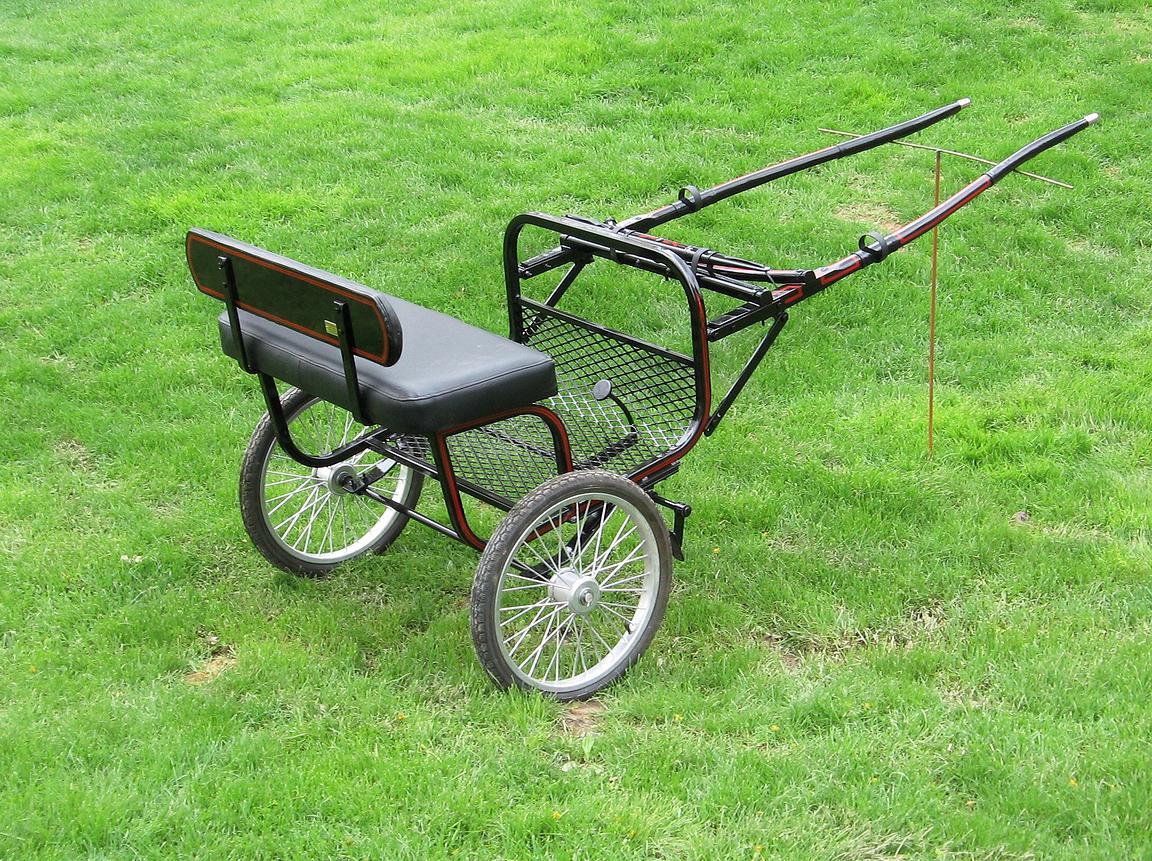 Regular Ez Entry Cart