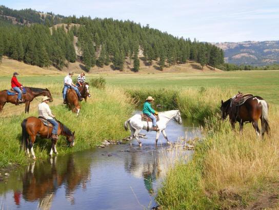 Horseback rider crossing San Poil creek.