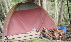tent camp.jpg