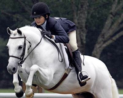 For Lease – Scooter is a lovely pony who is kind and gentle on the ground.