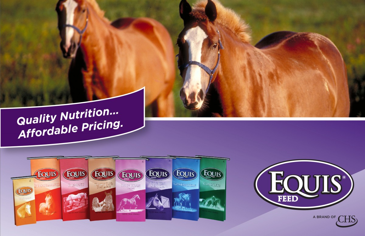 The Equis Feed line, brought to you by CHS Nutrition, embodies this core value. With updated, advanced nutrition formulations and exciting new packaging, the Equis Feed line promises to achieve the next level of excellence in the equine feed market.