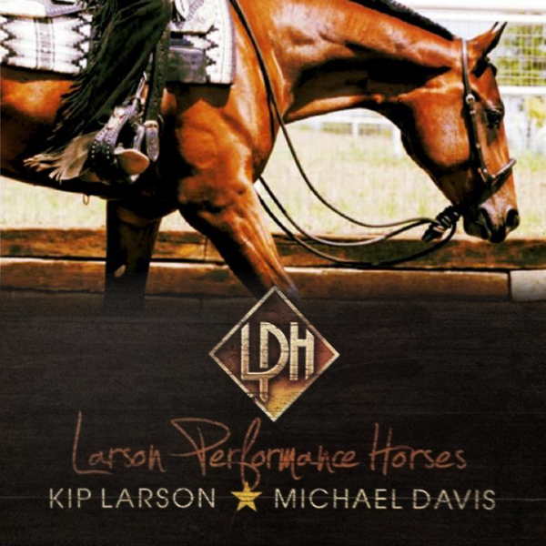 Larson Performance Horses: Kip and Christine Larson have developed a World and National Champion program centered around a youth and amateur partnership. Specializing in all around events including Western and English divisions.