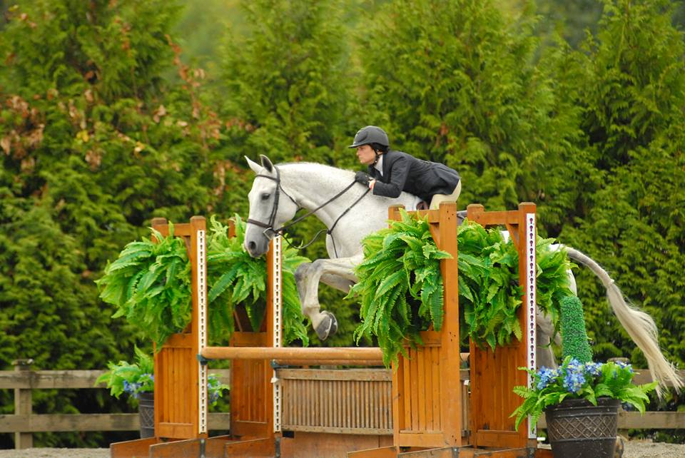 Magnolia Ridge Training Center specializes in the equestrian sport of Hunters, Jumpers, and Equitation. We offer experienced instruction on quality, trained horses in a fun and positive atmosphere.  Assistant Trainer Jacque and Certo