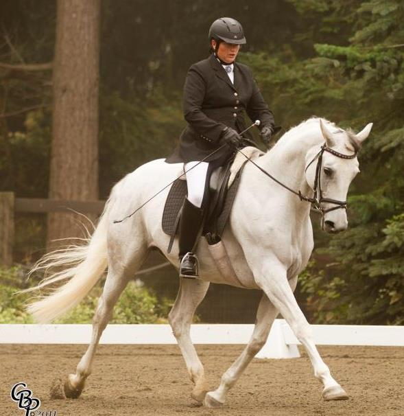 Jaedorin at her last show… now retired to being a broodmare!