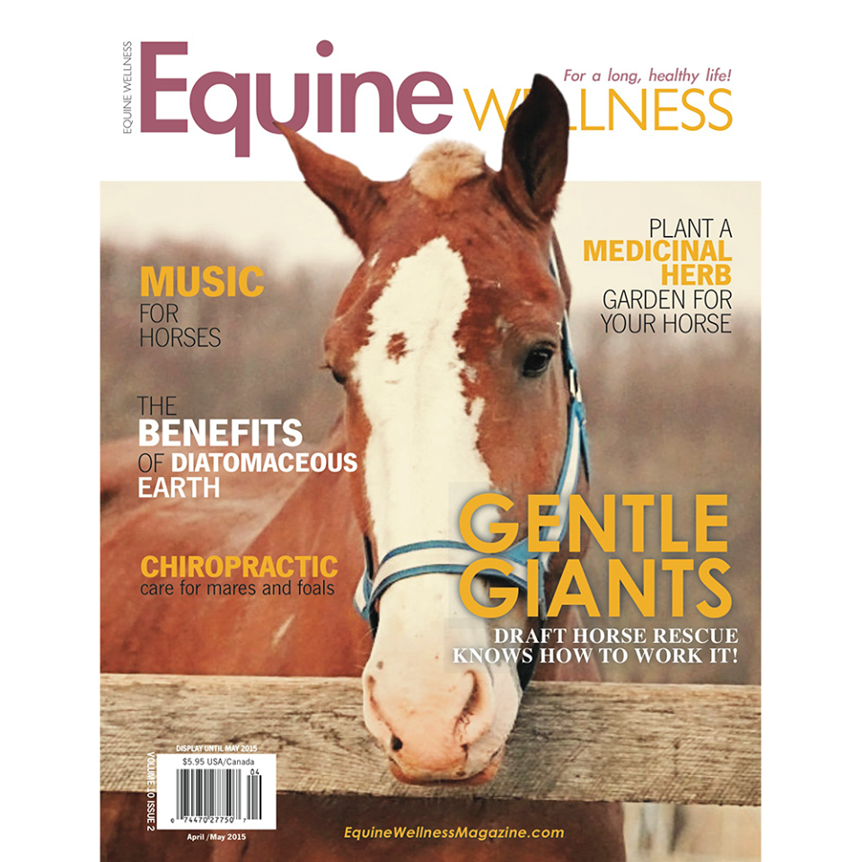 Equine-wellness
