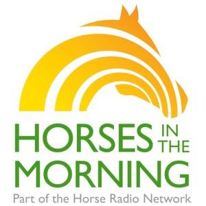 Horses-in-the-morning