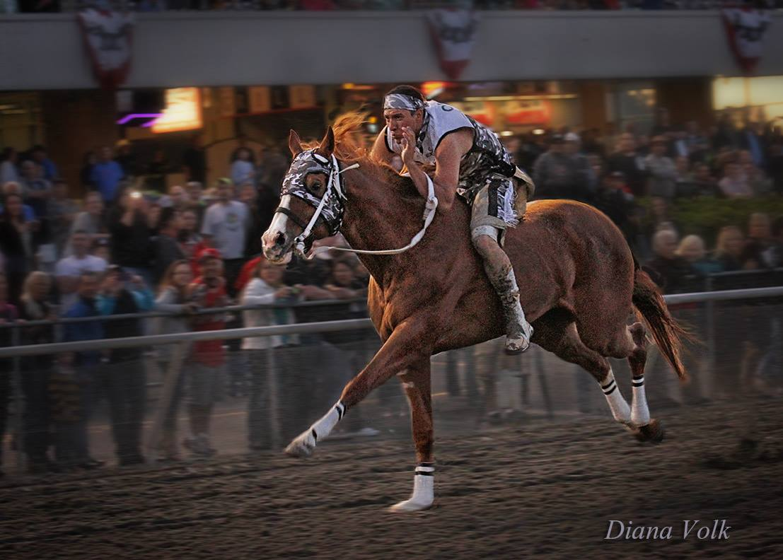 Battle Of The Horse Nations Championship Race!!! Last race of the day  Box 1-WarMan, Box 2-Grizzly Mountain, Box 3-Carlson Relay, Box 4-Awasapsii Express, Box 5-Omak Express!!! Photo by Diana Volk