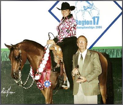 Amazing Two 2001 Bay Arabian Gelding