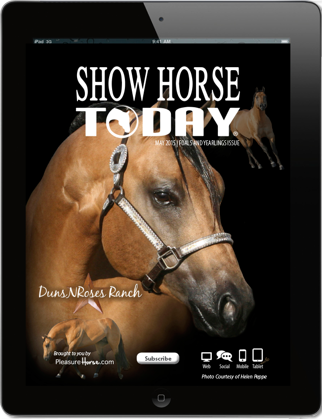 Show-Horse-Today