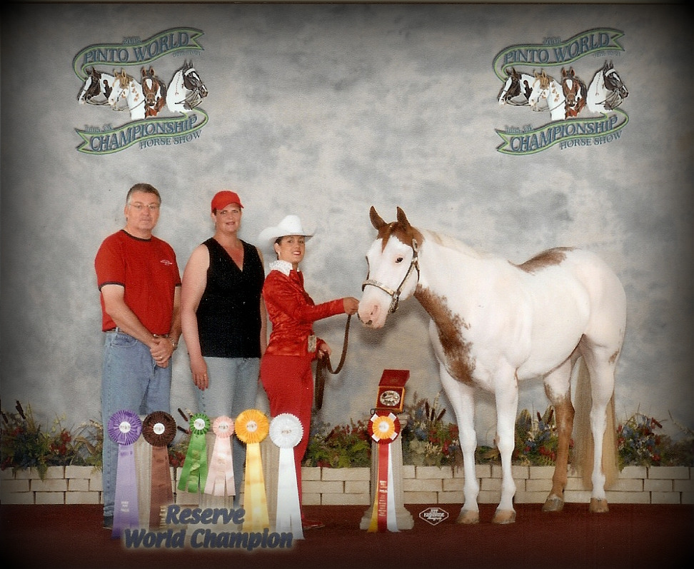 Chrissy Shuart and Triple Bars Robin  In 2008 at thier First Pinto Show were the World Show Reserve World Champion Driving, English Showmanship 8th place, and Western Showmanship finalist.