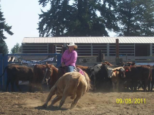 Howdy, I go by my nickname, Skunk, a name that no doubt one would ever forget or confuse with anybody else. I am the daughter of the well known cutting horse trainer in the Northwest, Buster Smith, who owned and trained the hall of fame AQHA Bueno Chex, King Fritz, The Maestro and many others.