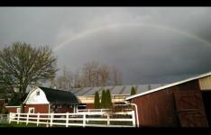 HC rainbow edited.jpg