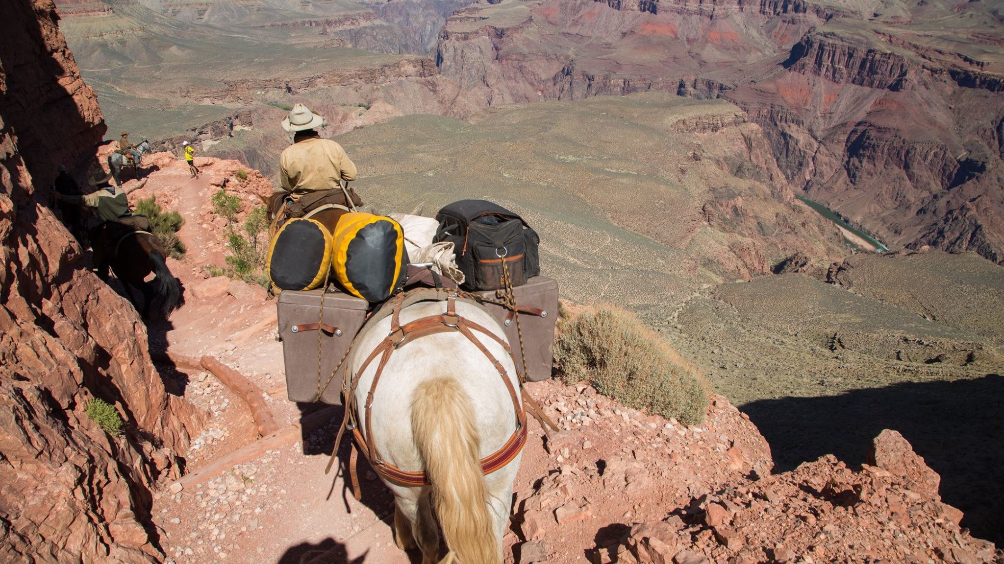 """Dropping into the """"Big Ditch"""" was exhilarating. We couldn't find anyone who'd taken horses rim to rim before. Our mustangs didn't miss a step (thank god) and we were very impressed with the trail quality. You should do it."""