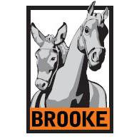 111-The-brooke