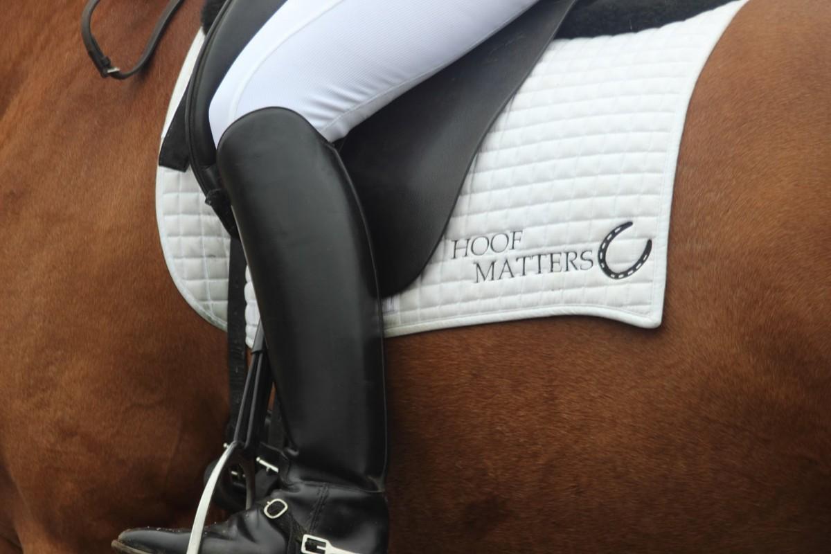 111-hoof-matters