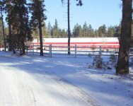 111 snow arena.jpg