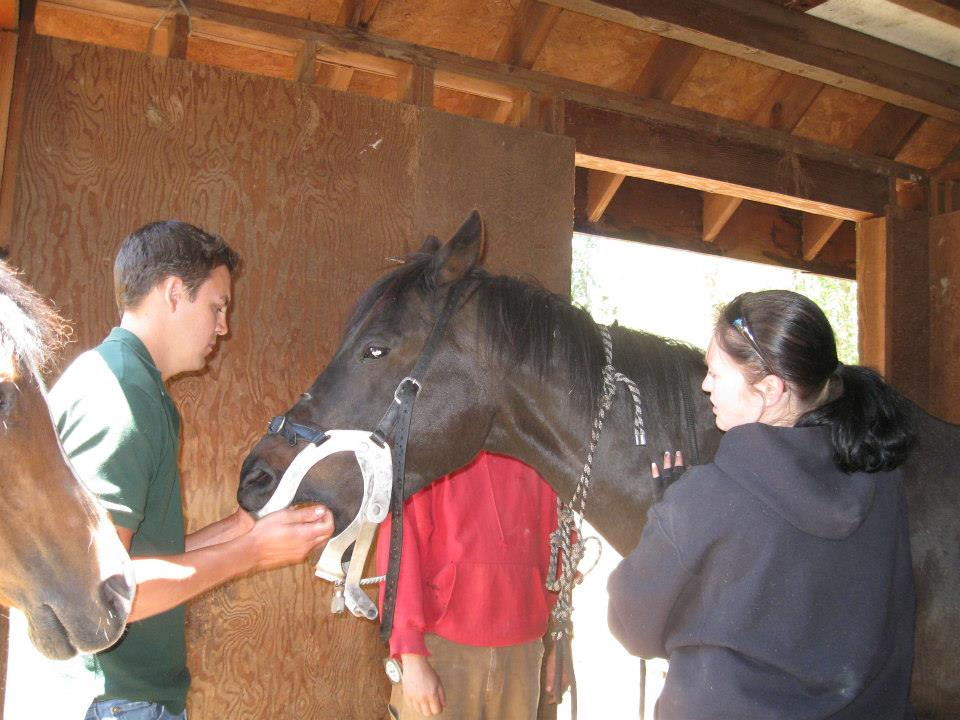 Not comfortable writing about yourself?  Check out the NW Equine 'Business Owners' category for horse folks whose businesses is words.  Contact them and invest in your business, with words that help you stand out from crowd.