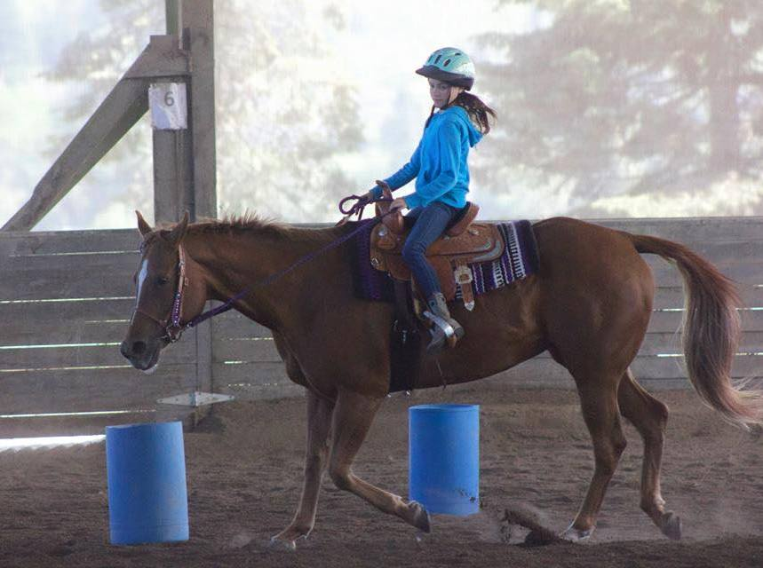 Always wanted to learn how to ride a horse? What's stopping you? Don't let fear, inexperience, time, or anything get in the way of your dreams. Start today and let us help you turn those dreams into reality.
