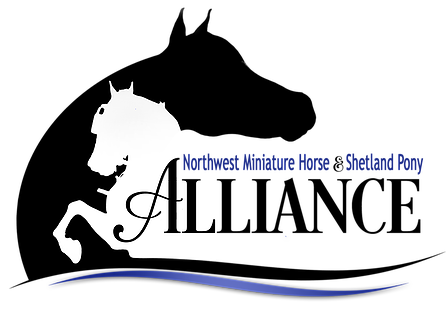 The Northwest Miniature Horse and Shetland Pony Alliance (NWMHSPA) was formed to promote of our Miniature Horses and Shetland Ponies through a variety of venues in the wonderful Area VIII.