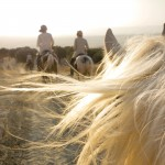 Emma-White-_-Morocco.jpg