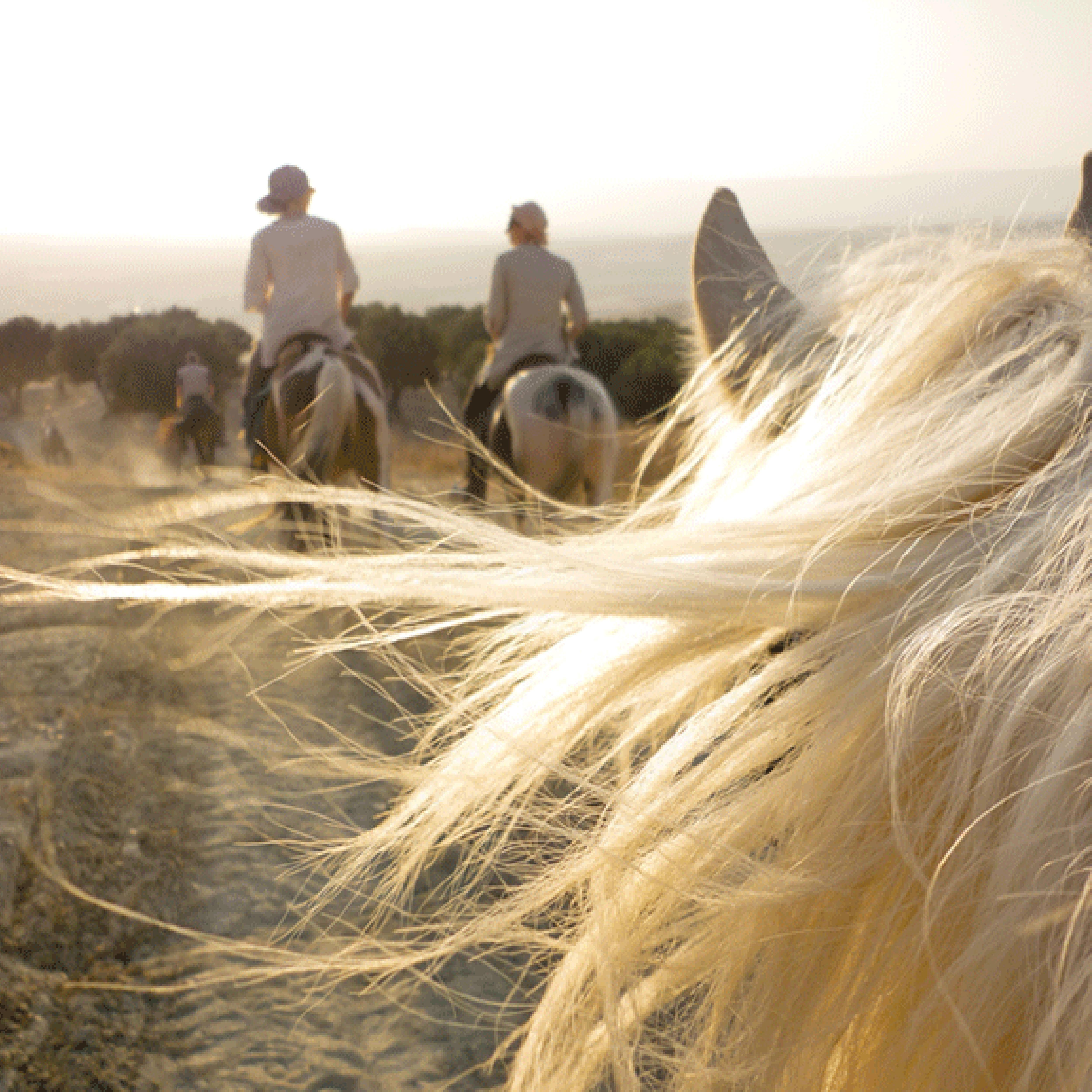 © Emma White | Morocco