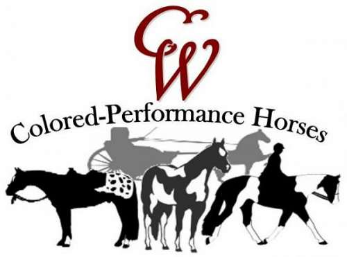 CW has a combined 40  years experience with breeding, training, and showing horses professionally for themselves and outside clients.  Specializing in Western Pleasure, Hunter under Saddle, Ranch Riding, Trail, Showmanship and Halter.
