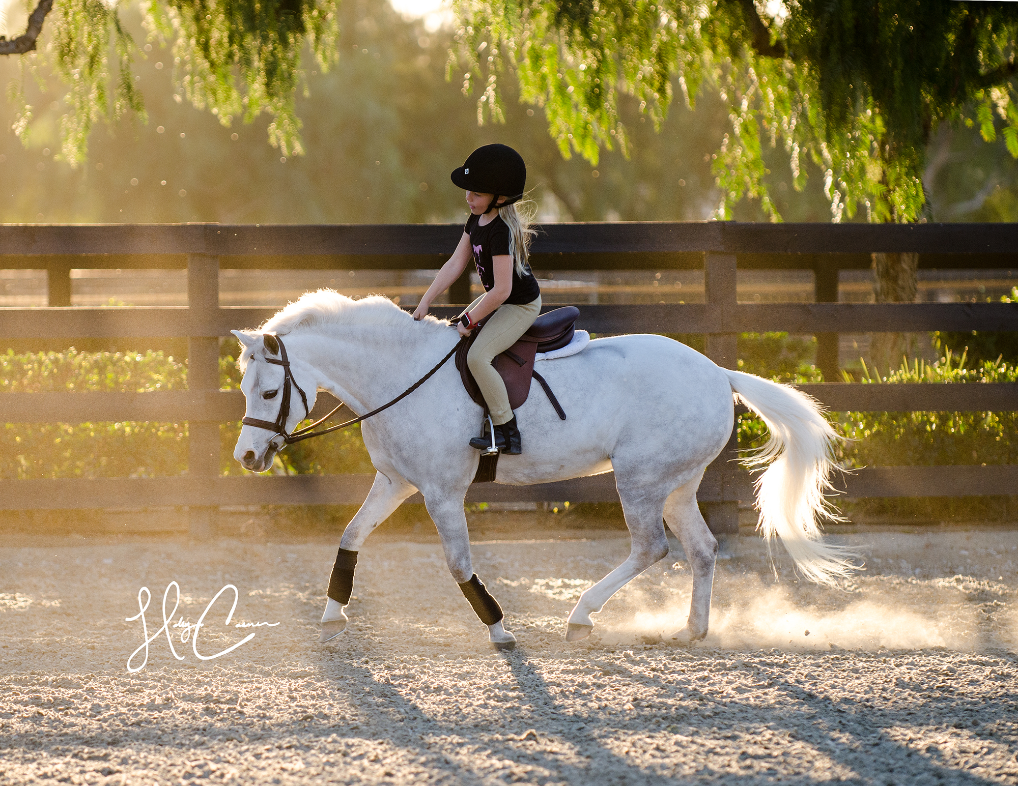 Holly Casner, The Equestrian Photographer – Horse and Rider Session