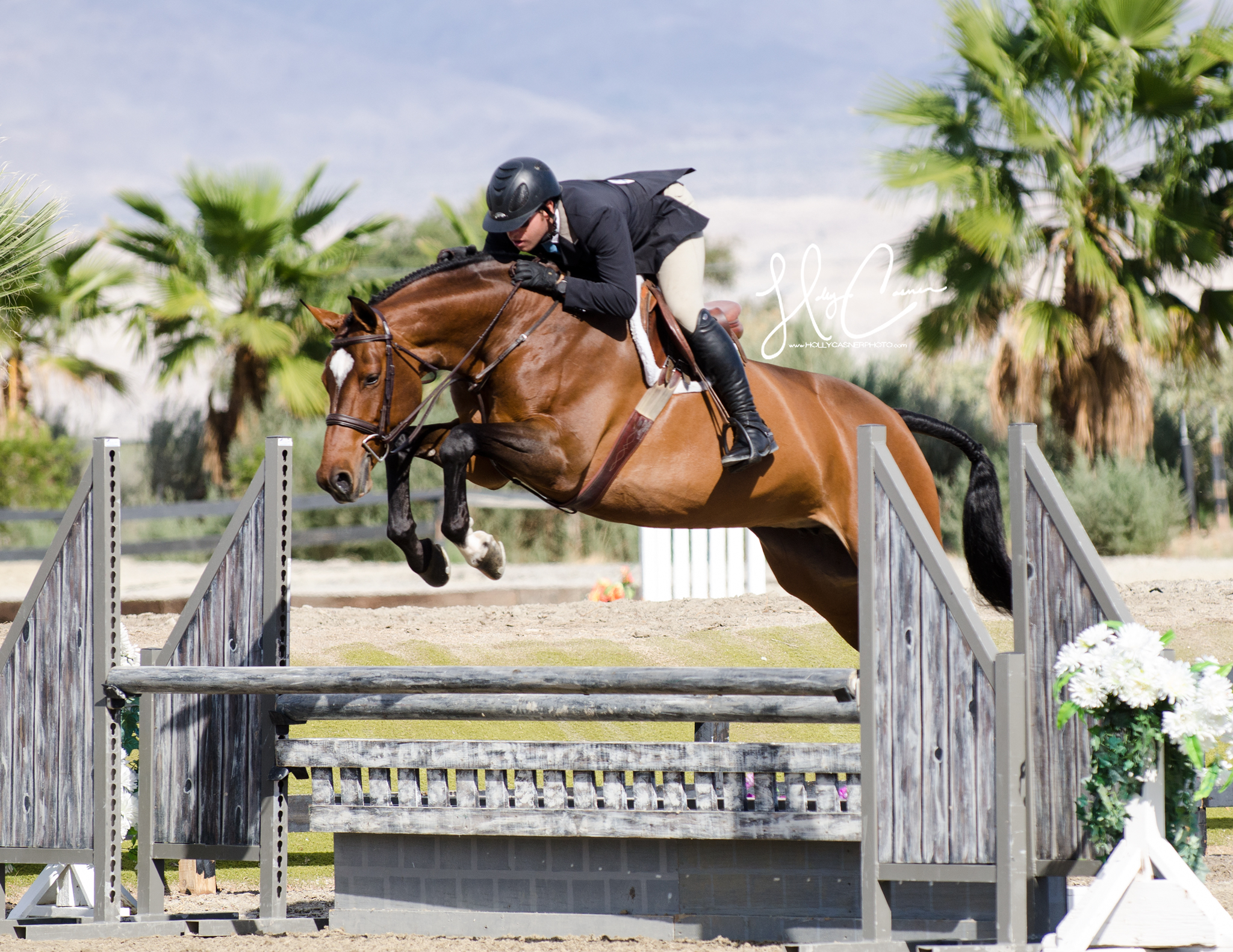 Holly Casner, The Equestrian Photographer – Horse Show Photography – Hunters