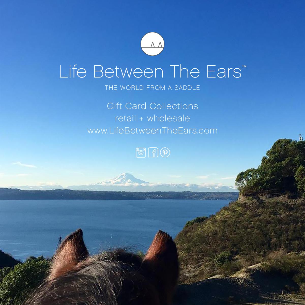Life Between The Ears