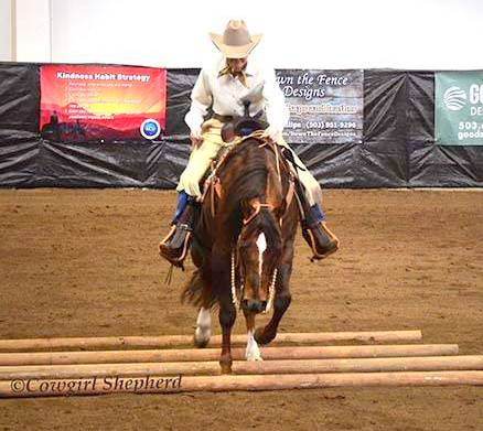 April 2016 – Key To My Cash Box added 9 more points in Ranch Riding with three first place wins on Saturday at the OQHA show! Congratulations, Cash Box and Sue Sultze!