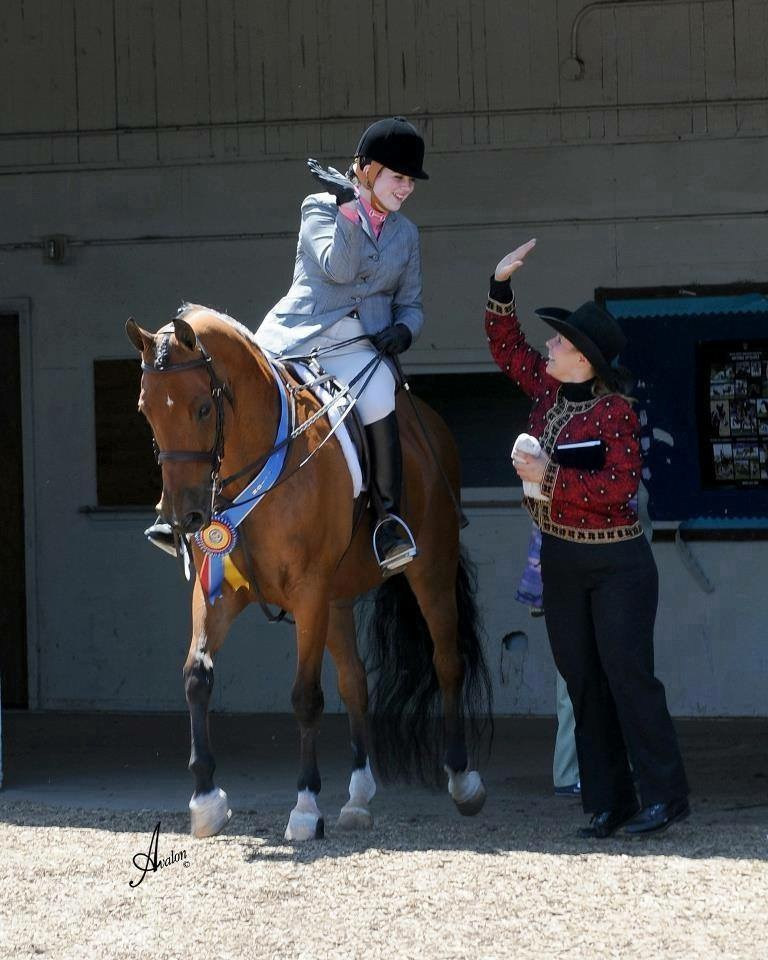 Tessa Beard and RP Let's Celebrate after winning the Junior Exhibitor Hunter Pleasure Championship at the Oregon Morgan Classic