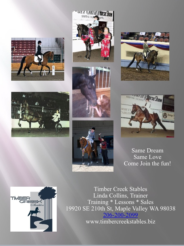 Same dream, same breed of horse, making dreams become a reality. Come join us!!!