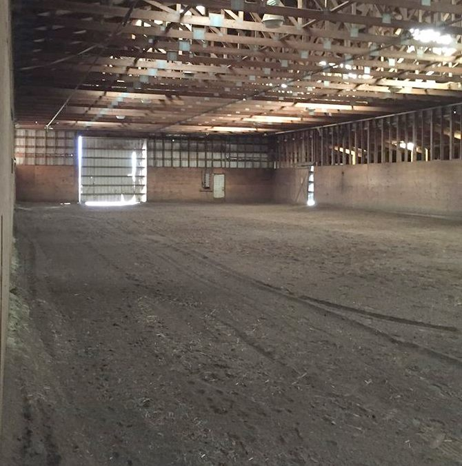 Enclosed area is 60 x 144 with ample lighting and footing is groomed regularly.