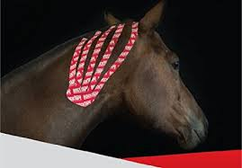 equine-tape