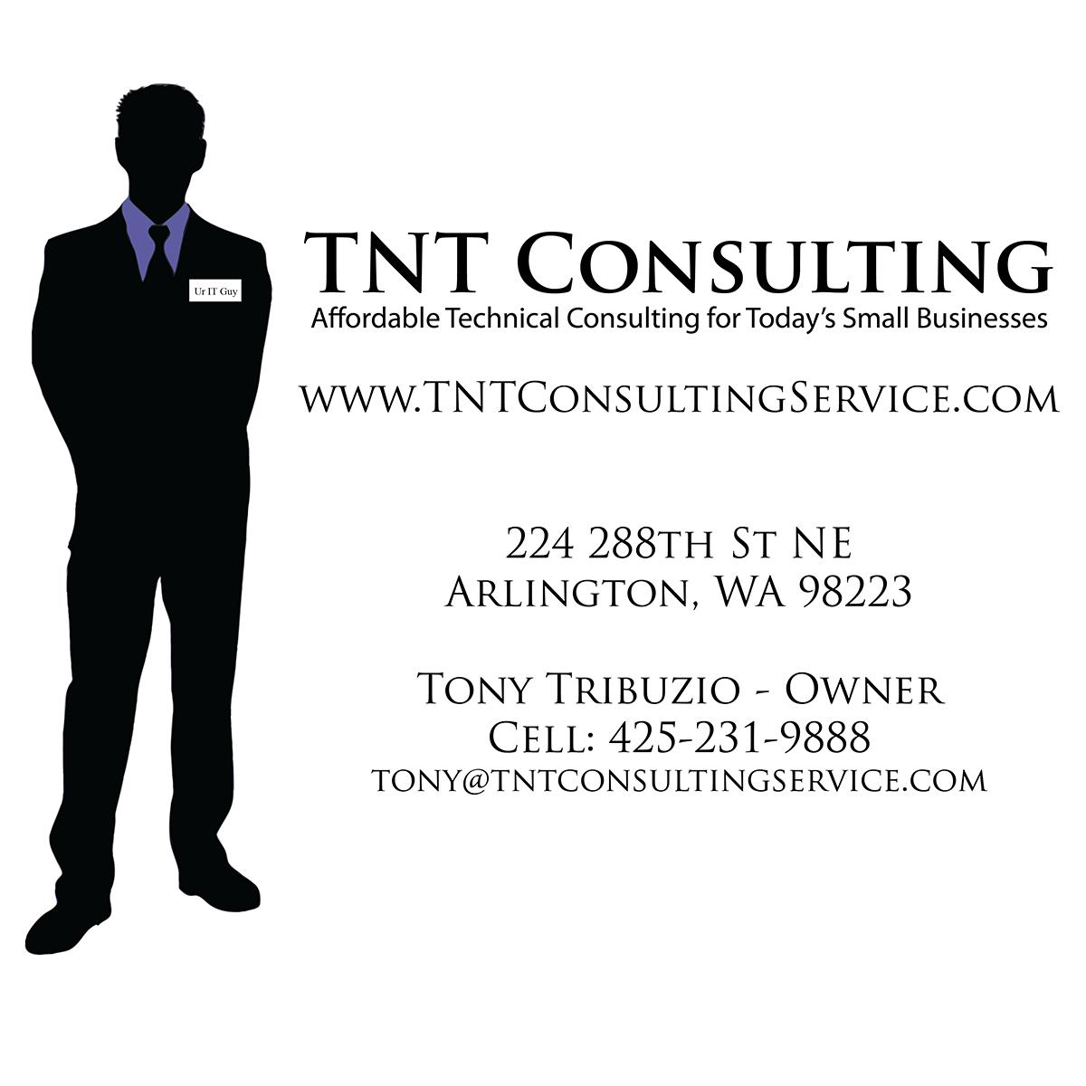 TNT-Consulting-Logo-01
