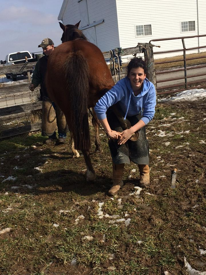 The Kentucky Horseshoeing School combines the art and science of horseshoeing to provide the most comprehensive farrier education available in the the United States today. Come to Kentucky and see what KHS can do for you.