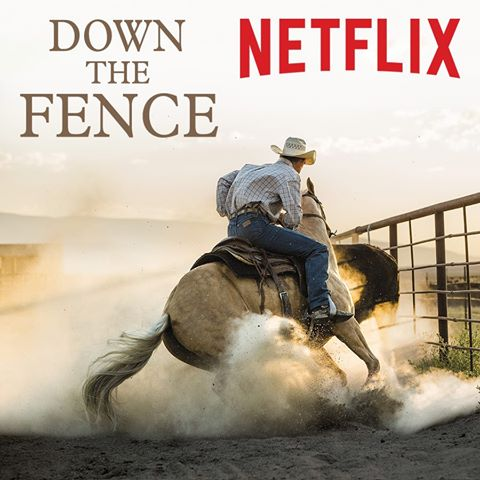 'Down the Fence isn't a behind-the-scenes training doc or exposé, but it's a beautiful piece of cinematography, a love letter to the discipline of reined cow horse.' – Kristen Kovatch with Horse Nation