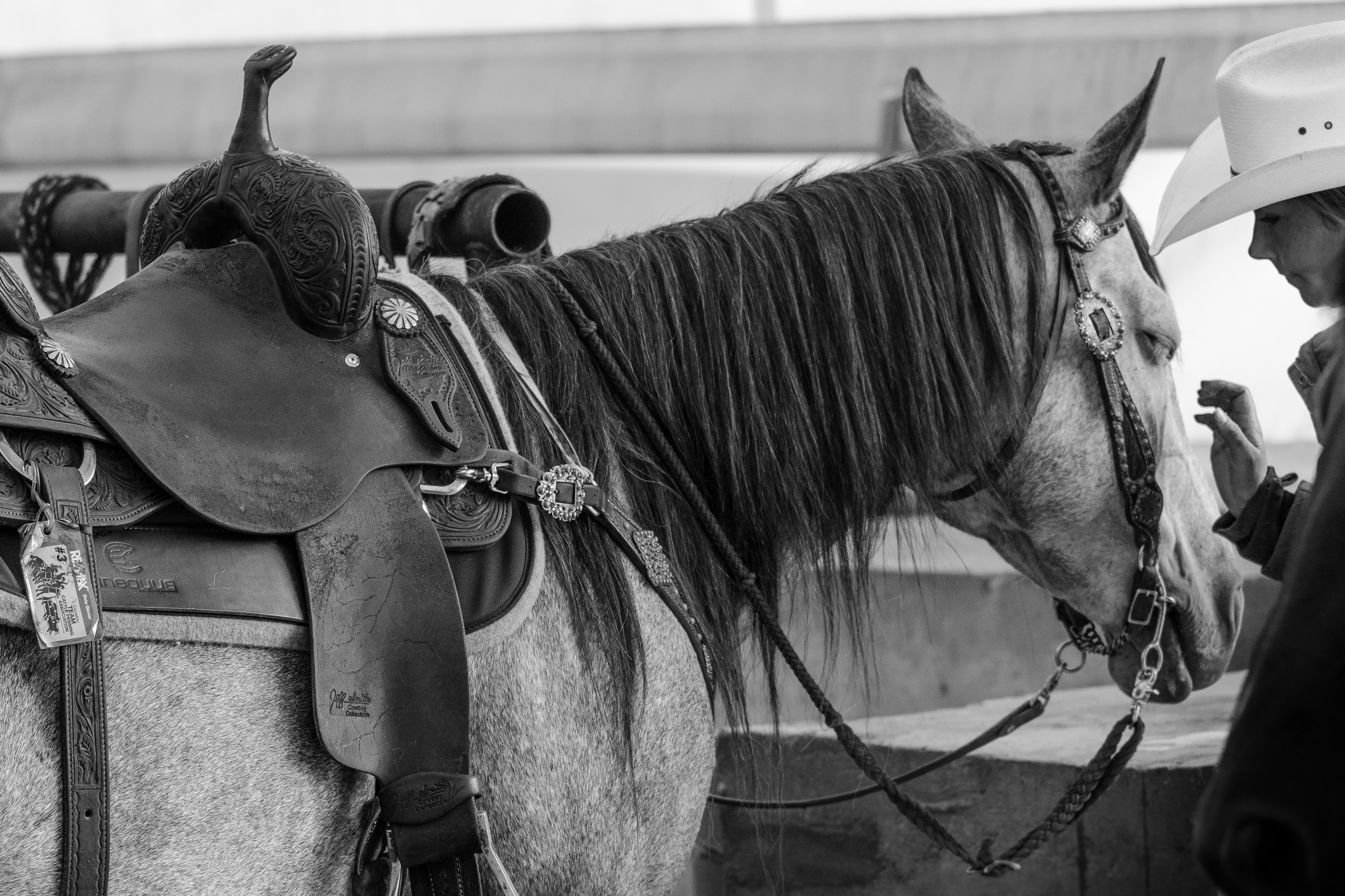Fostering the bond between horse and rider.